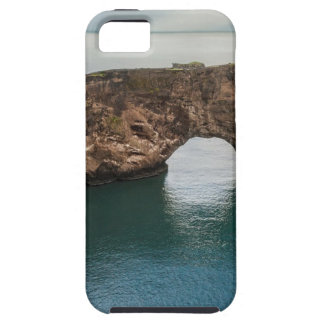 Cliffs and Ocean Case For The iPhone 5