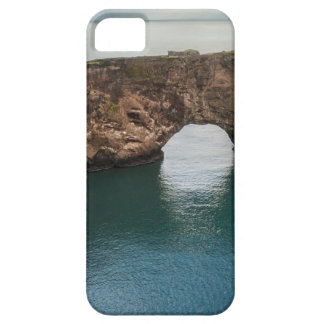 Cliffs and Ocean iPhone 5 Cases