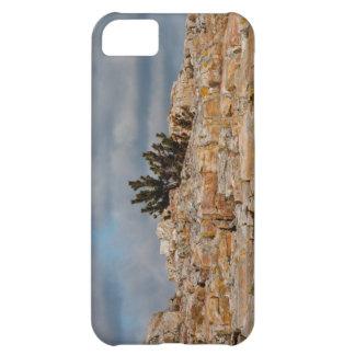 Cliffs iPhone 5 case