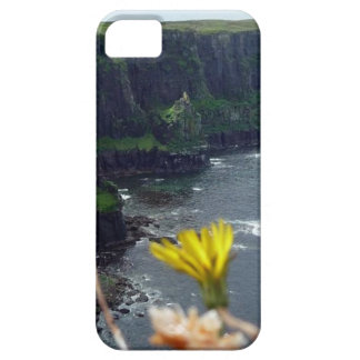 Cliffs of Scotland iPhone 5 Covers