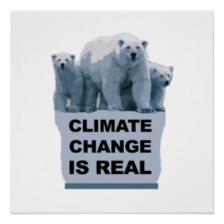 Climate Change is Real Perfect Poster