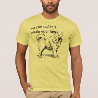 Climbed the mountain tshirt