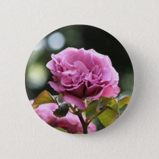 Climbing Angel Face 196 2 Inch Round Button