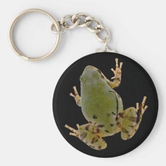 Climbing Arizona Tree Frog Photograph Basic Round Button Keychain