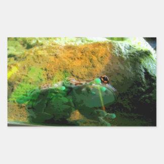 Climbing Frog CB
