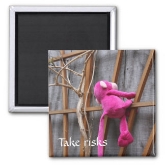 Climbing Pink Monkey Magnet
