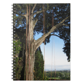 Climbing ropes hanging from a big tree notebook