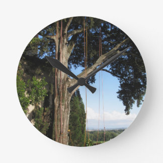 Climbing ropes hanging from a big tree round clock
