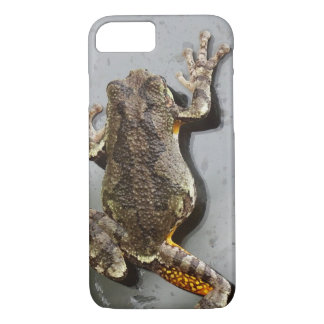 Climbing Tree Frog iPhone 8/7 Case
