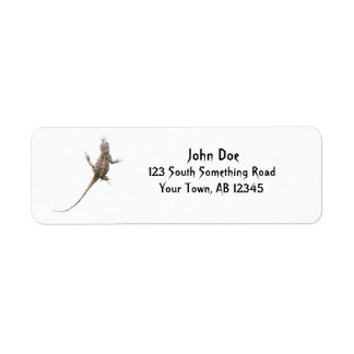 Clinging Eastern Fence Lizard Return Address Label
