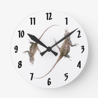 Clinging Eastern Fence Lizards Wallclock