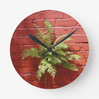 Clinging On Fern Wall Clock
