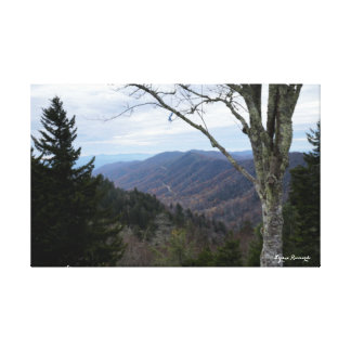 Clingmans Dome Canvas Print