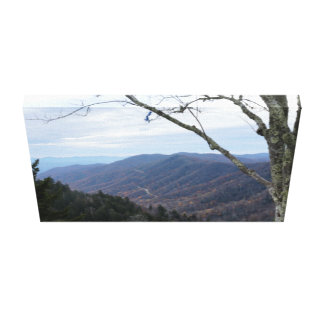 Clingmans Dome Smoky Mountains Canvas Print