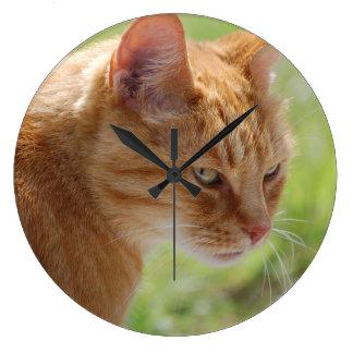 Clock Cat cat chat - photo Jean Louis Glineur
