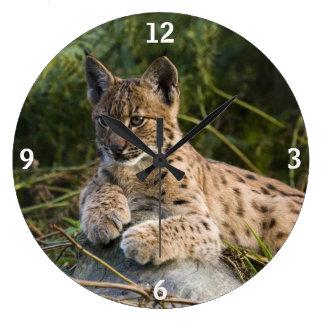 Clock - lynx