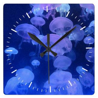 Clock with Jellyfish Photo from Florida Aquarium
