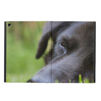 Close Up Black old dogs face with selective focus Case For iPad Air