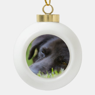 Close Up Black old dogs face with selective focus Ceramic Ball Ornament