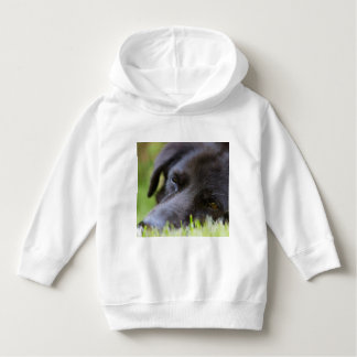 Close Up Black old dogs face with selective focus Hoodie