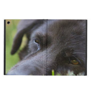 Close Up Black old dogs face with selective focus iPad Air Case