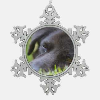 Close Up Black old dogs face with selective focus Pewter Snowflake Ornament