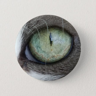 Close Up Cat's Eye 2 Inch Round Button