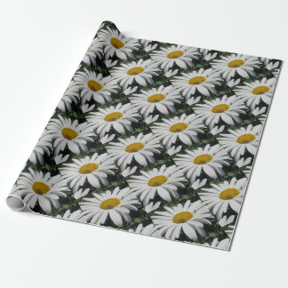 Close Up Common Daisy with Winged Insects Wrapping Paper