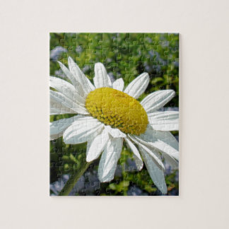 Close Up Common White Daisy With Garden Jigsaw Puzzle