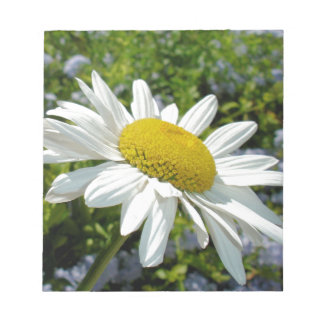 Close Up Common White Daisy With Garden Notepad
