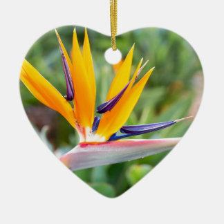 Close up Crane flower or Strelitzia reginaei Ceramic Heart Ornament