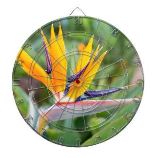 Close up Crane flower or Strelitzia reginaei Dartboard