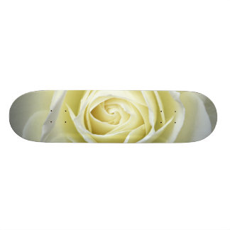 Close up details of white rose custom skateboard