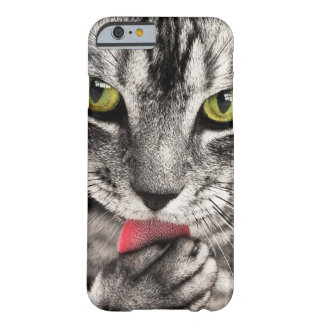 Close Up Green-Eyed Kitten Barely There iPhone 6 Case