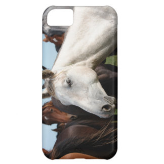 Close-up herd of horses cover for iPhone 5C
