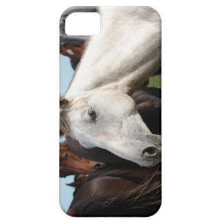 Close-up herd of horses iPhone 5 case