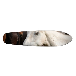 Close-up herd of horses. skateboard deck