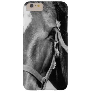 Close-up Horse Eye Barely There iPhone 6 Plus Case