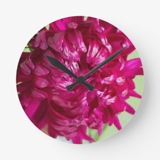 Close-up image of the flower Aster Round Clock
