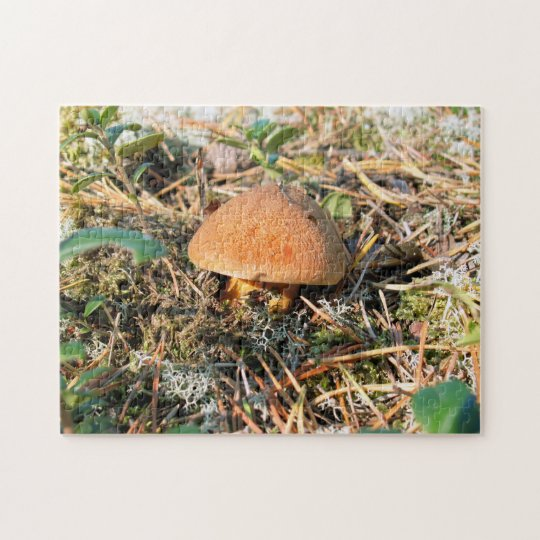 close up mushroom growing in a forest jigsaw puzzle