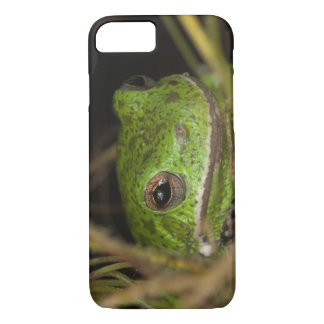 Close-up of a Barking treefrog on limb resting iPhone 7 Case