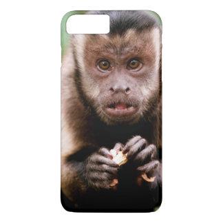 Close-up of a black-capped capuchin monkey iPhone 7 plus case