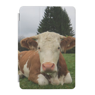 Close up of a brown and white cow laying down iPad mini cover
