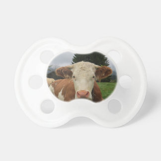 Close up of a brown and white cow laying down pacifier
