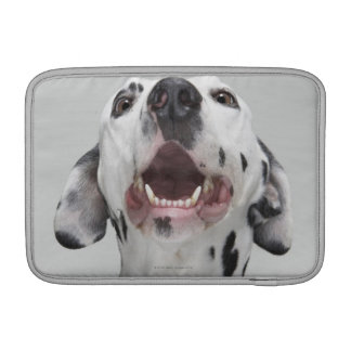Close up of a Dalmatian dog Sleeve For MacBook Air