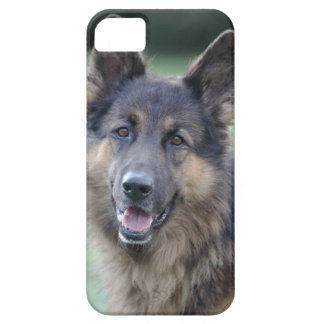 close-up of a dog face iPhone 5 covers