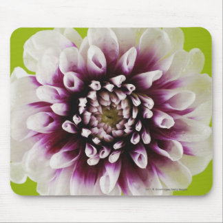 Close-up of a flower 2 mouse pad