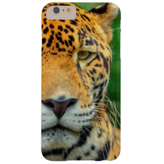 Close-up of a jaguar face, Belize Barely There iPhone 6 Plus Case