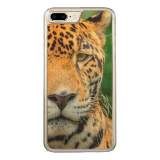 Close-up of a jaguar face, Belize Carved iPhone 7 Plus Case