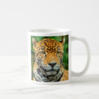 Close-up of a jaguar face, Belize Coffee Mug